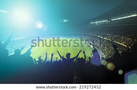 crowded football stadium  Royalty-Free Stock Photo #219272452