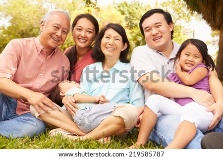 Multi Generation Family Sitting In Park Together #219585787