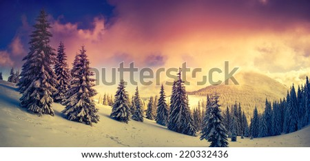 Fantastic evening landscape in a colorful sunlight. Dramatic wintry scene. National Park Carpathian, Ukraine, Europe. Beauty world. Retro style filter. Instagram toning effect. Happy New Year! #220332436