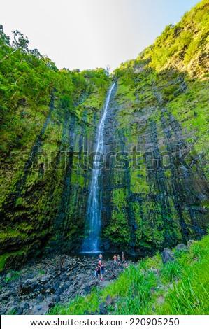 Waimoku Falls in a tropical rain forrest on The Road to Hana, Maui, Hawaii, USA #220905250