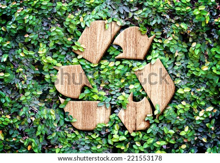 Eco concept :Wood texture Recycle icon on green leaves wall Royalty-Free Stock Photo #221553178
