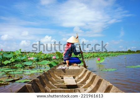 Beautiful landscaping of Vietnamese village, woman rowing the row boat to pick lotus flower on waterlilly pond, large aquatic flora lake in green leaf, pink flower make amazing scene at Mekong Delta