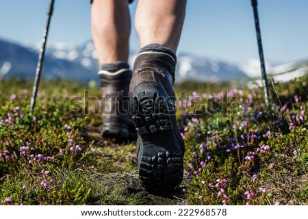 Hiking trail with flowers #222968578