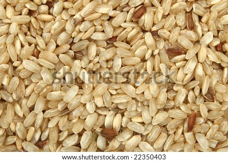 Brown rice #22350403