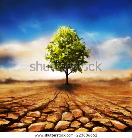 Dry soil with one green tree landscape under sunny sky. Alone and new life concept. Nature background #223886662