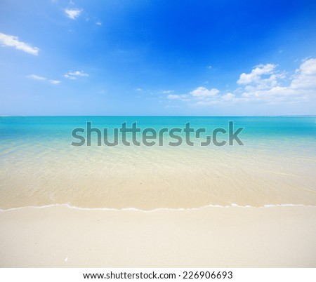 beach and tropical sea #226906693