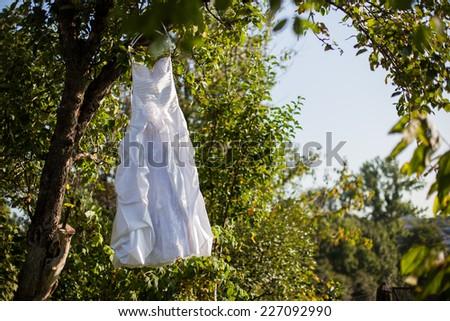 bride #227092990