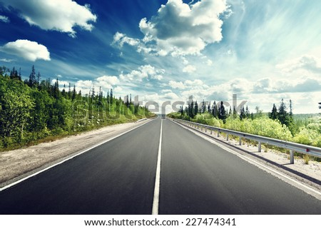 road in north forest #227474341