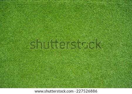 green grass #227526886