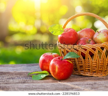 Organic apples in basket in summer grass. Fresh apples in nature #228196813