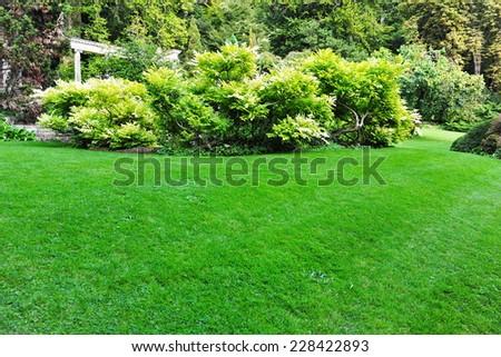 Peaceful Garden Lawn Background #228422893
