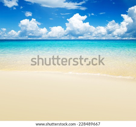 beautiful beach and tropical sea #228489667