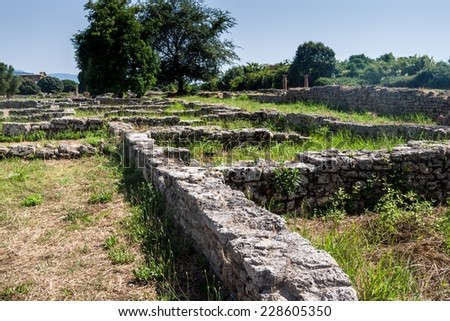 Ruins of ancient greek city Paestum, Italy #228605350