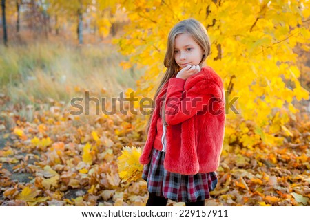 Girl and autumn landscape #229157911