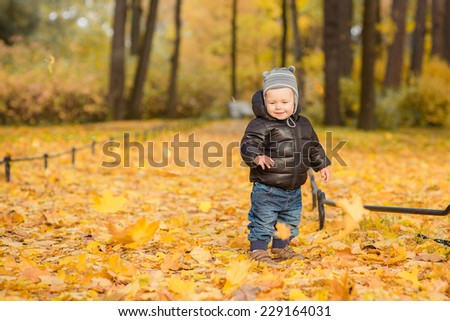 Photo of cute little boy enjoying autumn nature, pretty infant playing in park, cheerful baby boy having fun outdoors, adorable kid in fall forest, happy child play with dry orange maple leaves