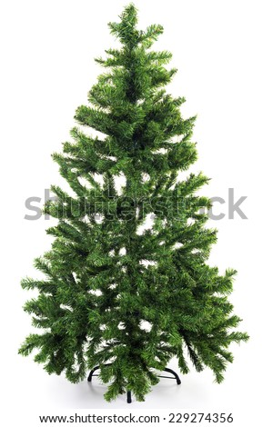 Bare Christmas tree without decoration #229274356