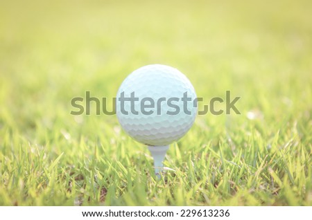 Golf ball on green grass  - vintage effect style pictures