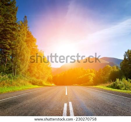 sunset highway #230270758