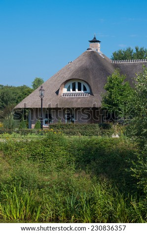 house with thatched roof in a green surroundings #230836357