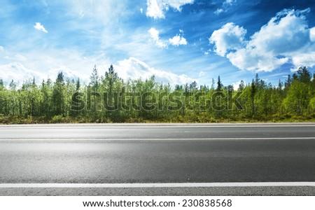 asphalt road and forest #230838568
