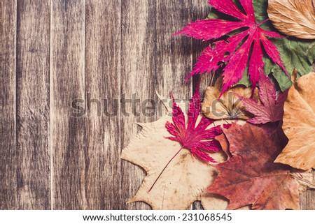 Autumn leaves on wooden background/ Autumn leaves on wooden background