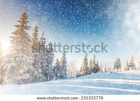 Fantastic mountain landscape glowing by sunlight. Dramatic wintry scene. Carpathian, Ukraine, Europe. Beauty world. Retro filter. Instagram toning effect. Happy New Year! Royalty-Free Stock Photo #231333778