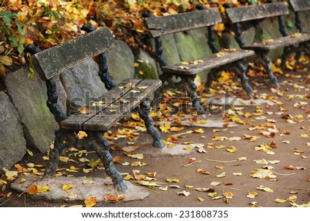 Wooden benches at park in autumn time #231808735