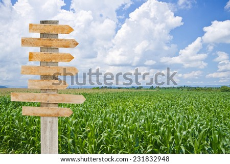Wood sign in farm on sky background
