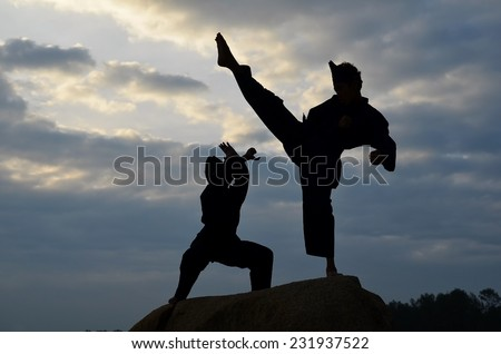 Silhouette of two young boys sparring a pencak silat, Malay traditional discipline martial art #231937522