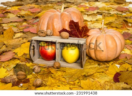 apples in crate on autumn leaves background #231991438