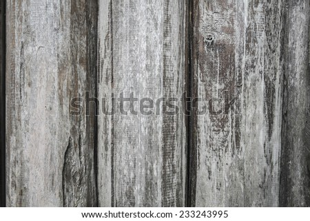Wood Texture Background #233243995