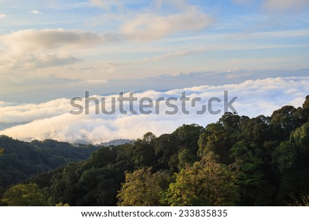 Morning View of Inthanon Mountain, Chiang Mai, Thailand #233835835