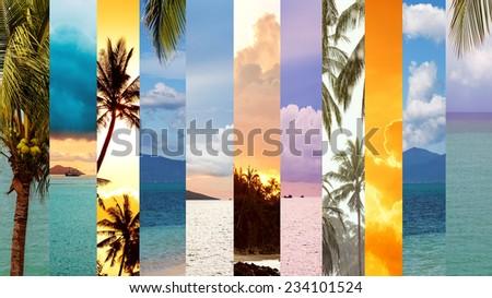 Sea and palm trees, collage, Koh Samui, Thailand