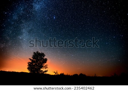 Starry sky and tree. High level of noise #235402462