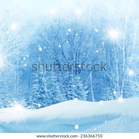 winter christmas background  #236366710