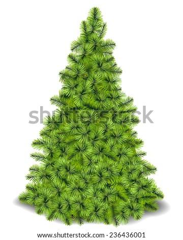 Christmas Tree.Vector #236436001