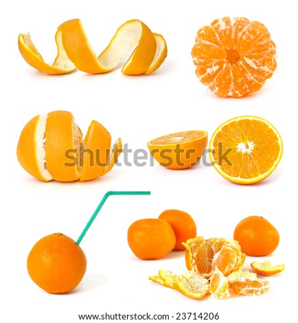 Collection of citrus on a white background #23714206
