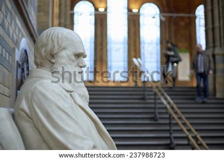 LONDON, UK - DECEMBER 11: Profile of Charles Darwin statue at the Natural History Museum. December 11, 2014 in London. #237988723