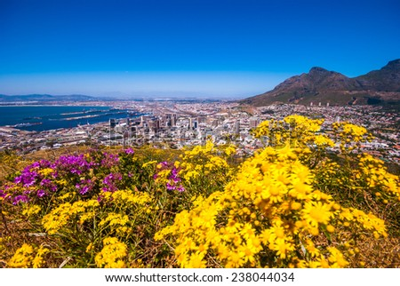 Aerial view of Table Mountain, Cape Town, South Africa #238044034