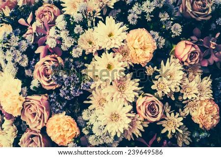 Vintage old flower backgrounds - vintage effect style pictures