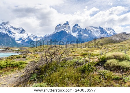 Beautiful nature in the Torres del Paine National Park, Patagonia, Chile #240058597