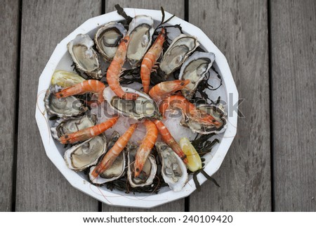 Oysters and shrimps on a plate #240109420