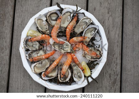 Oysters for sale at the seafood market #240111220