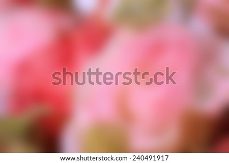 blurred beautiful of rose artificial flowers #240491917