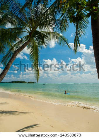 Tropical beach of Koh Samui island in Thailand #240583873