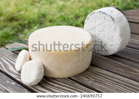 Assorted goat cheese lying on a wooden table boards on s farm #240690757