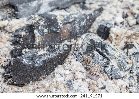 close up ashes after burning of charcoal #241191571