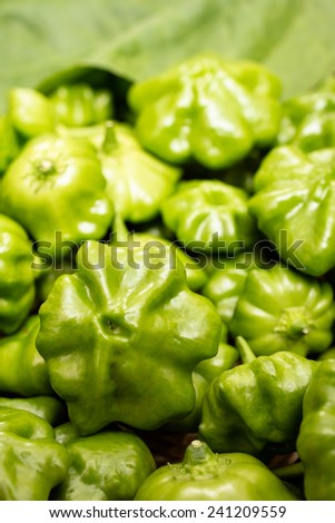 Close up of green chili pepper in vertical format #241209559