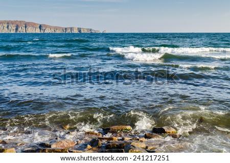 Sea wave breaking on the coast #241217251