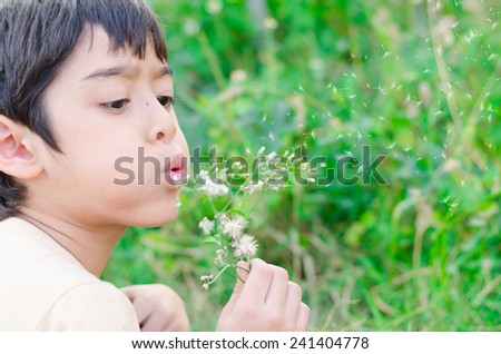 Little boy blow flower floating to the air in the garden #241404778
